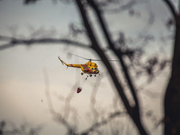 Pożar lasu w Boryczy
